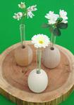 FlowerEgg_all.jpg
